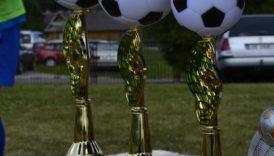 Czytaj więcej o: Turniej Piłkarski o Puchar Wójta Gminy Uchanie